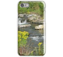 Wild Waters Tamed  iPhone Case/Skin