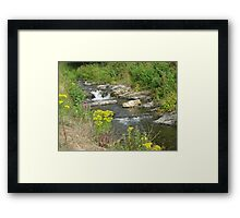 Wild Waters Tamed  Framed Print
