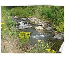 Wild Waters Tamed  Poster