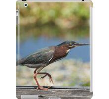 Green Heron iPad Case/Skin