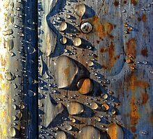 Drops of Jupiter by ptpop