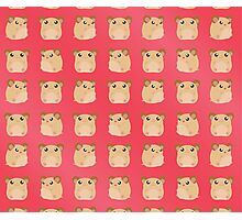 Kawaii Hamster - On Red Background Photographic Print