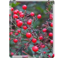 Red Red iPad Case/Skin