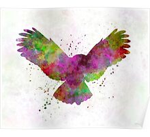 Owl 02 in watercolor Poster