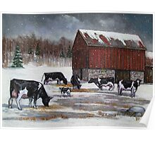 Cows in Snowy Barnyard No. 2, Oil Pastel Painting Poster