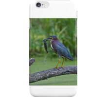 Green Heron wins local fishing contest! iPhone Case/Skin
