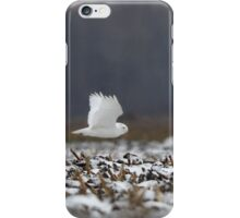 Ghost - Snowy Owl iPhone Case/Skin