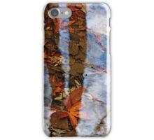 Vernal Pools iPhone Case/Skin