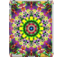 Mixed Media Mandala 5 iPad Case/Skin