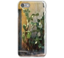 Elysian Grove Market II iPhone Case/Skin