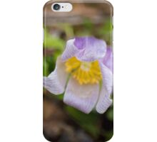 Spring's First Bloom iPhone Case/Skin