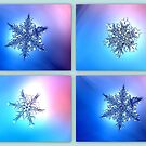 Snowstars by ©The Creative  Minds