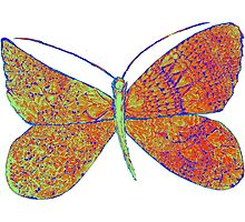 Psy Butterfly Photographic Print