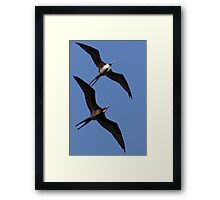 A Beautiful Couple Framed Print