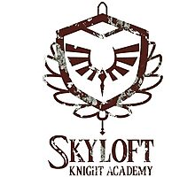 Zelda skyloft knight academy Photographic Print