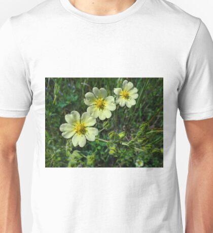 Canadian Dwarf Cinquefoil Unisex T-Shirt