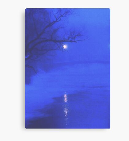 on a lonely winter night Canvas Print