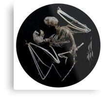 Siamese Bat Metal Print