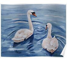 Simply Swans Original Oil Painting Poster