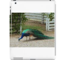 Hunt and Peck iPad Case/Skin
