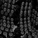 bike chain flowers by tinncity