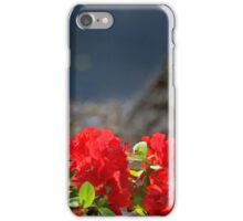 Last Call iPhone Case/Skin