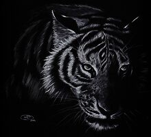 The Hunter. Tiger in white  by ArtByTaraUK