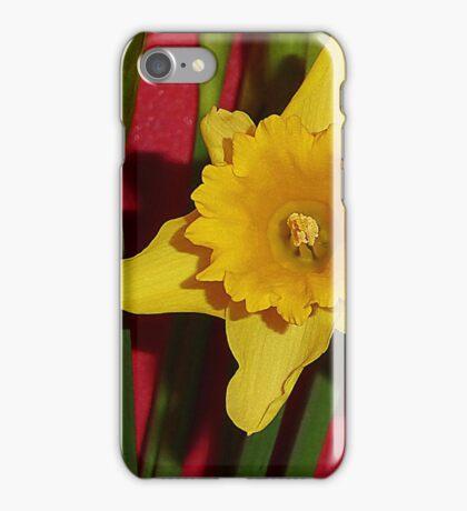 The Beginning Of Spring iPhone Case/Skin