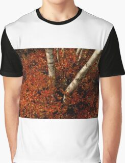 Birches and Red Bushes, OCT 25, 2013 Graphic T-Shirt