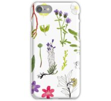 Herbarium / Herbier #2 iPhone Case/Skin