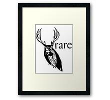 The Great Horned Owl Framed Print