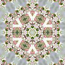 Krazy Kaleidoscopes by Monnie Ryan