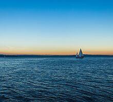 Elliot Bay by Calazones-Flics