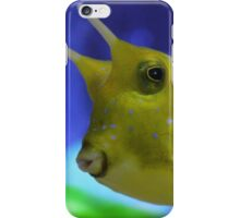 cow fish 2 iPhone Case/Skin
