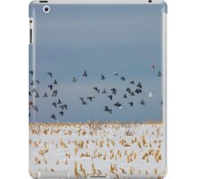 Flying Pigeons iPad Case/Skin