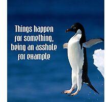 Wise penguin Photographic Print