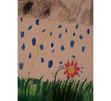 flower in the rain Photographic Print