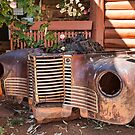 Rusting Beauty by Pauline Tims