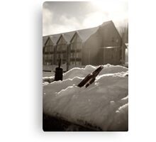 Canadian Water Canvas Print