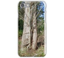 Little Tree (Within A Tree Trunk) iPhone Case/Skin