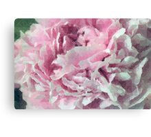 Peony Moutan Flower Floral Scenary Nature Printable Art Canvas Print
