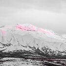 Denali - Alpenglow 2 SC by Mary Carol Story