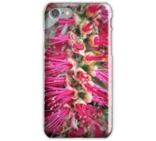 Australian BottleBrush iPhone Case/Skin
