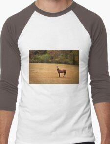 Horse Men's Baseball ¾ T-Shirt