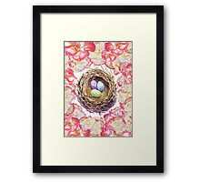 Bird Nest And Roses Framed Print
