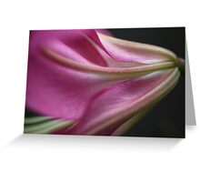 Side Of Lily Greeting Card
