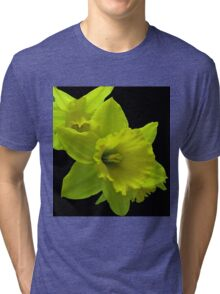 Daffodils Rejoicing Tri-blend T-Shirt