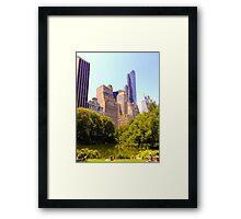 Summer Central Park Framed Print