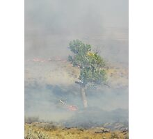 Another fire survived Photographic Print