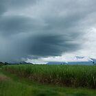 Storm Front II by Kerryn Madsen-Pietsch